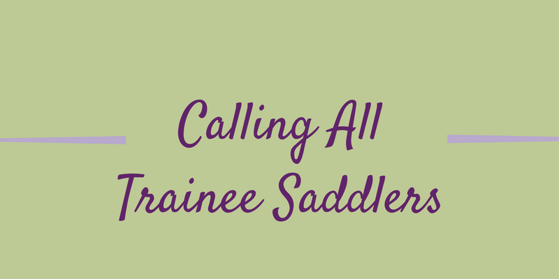 Scholarship Opportunity For Trainee Saddlers