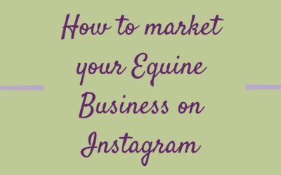 How To Market Your Equine Business Using Instagram