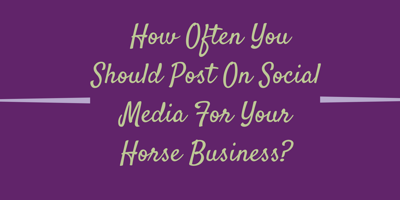 How Often You Should Post On Social Media For Your Horse Business?