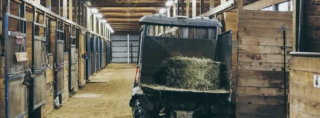 How To Boost Your Livery Yard Revenue